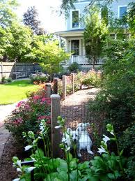 Backyard For Dogs by 17 Best Images About Dog Friendly Garden Ideas On Pinterest