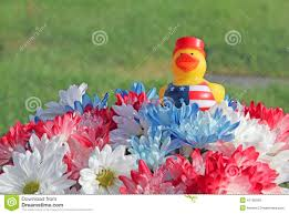 red white blue mum and daisy flowers with patriotic yellow rubber