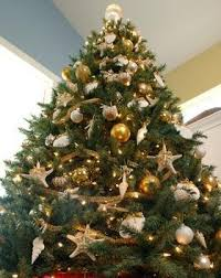 obsessed with this gold shell themed tree and oh so