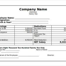 Excel Paystub Template Free Professional Pay Stub Or Salary Slip Exle For Excel Vlcpeque