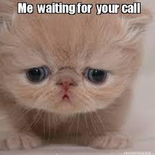 Kitty Meme Generator - meme maker me waiting for your call