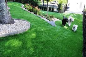 triyae com u003d artificial grass backyard dog various design
