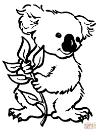 koala with eucalyptus leaf coloring page free printable coloring