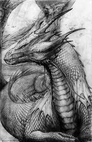 best 25 dragons tattoo ideas on pinterest design dragon