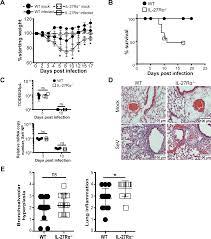 il 27 limits type 2 immunopathology following parainfluenza virus