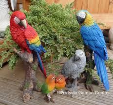 resin large blue macaw arts bird garden ornament woodside