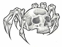 spider web skull pencil and in color spider web skull