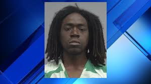 gainesville police arrest man accused of attacking woman