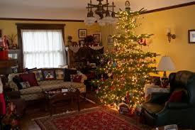 noble fir christmas tree poll what of christmas tree do you like oregonlive