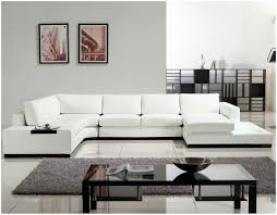 Furniture Choice Furniture If You Have A White Sectional Sofa Modern White