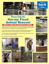 501 C 3 Donation Receipt Hurricane Harvey Pet Donations The Mosby Foundation
