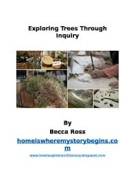 exploring trees through inquiry a reggio inspired tree unit by