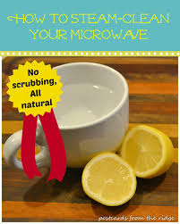 How To Clean House Fast by How To Clean Your Microwave Postcards From The Ridge