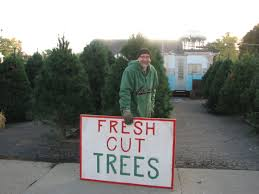 uggh beverly tree stand mioaklandcounty
