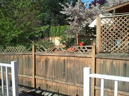 backyard privacy screen ideas apartment therapy