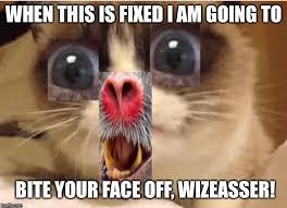 Baboon Meme - baboon imgflip