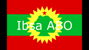Oromo Flag Onn Oromia Onn Oromia Hiriiraa Nagaa Bahuun Mirga Waa Ibsachuu
