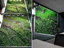 spain u0027s largest vertical garden cleans indoor office air