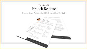examples of resumes minimalist cv resume template job