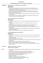 sle resume for business analysts duties of executor of trust manager corporate development resume sles velvet jobs