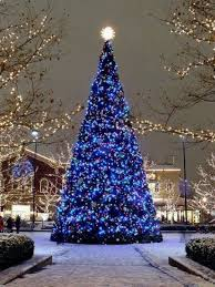 Small Blue Christmas Decorations by 88 Best Blue Christmas Images On Pinterest Christmas Time Merry