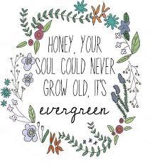 ed sheeran lyrics quotes ed sheeran lyric love lust and other quotes