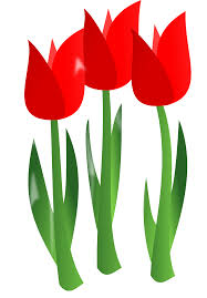 february flowers clipart