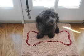 Soggy Doggy Doormat Small Doormat 18x24