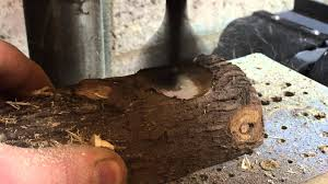 making a log candle holder youtube