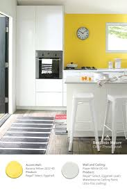 color overview benjamin moore modern and kitchens