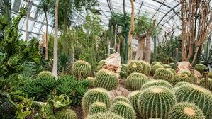 Beijing Botanical Garden Beijing Botanical Gardens 北京植物园 Wofo Si Lu Things To Do
