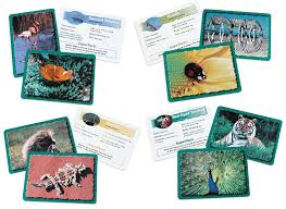 wildlife treasury cards learning resources classifying cards bundle toys