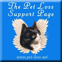 pet bereavement ten tips on coping with pet loss