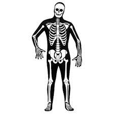 Skeleton Suit Halloween by Skin Suit Skeleton Costume Black Polyester Full Body