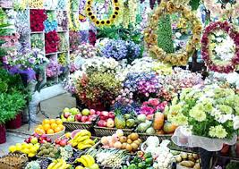 Wholesale Flowers Wholesale Plant And Flower Market Travel Guide Seoul City South