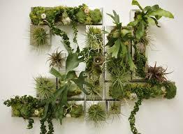 Indoor Vertical Gardens - minimalist indoor vertical gardens for modern homes