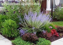 202 best combinations shrubs images on pinterest gardens