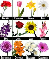 flower of the month birth month flowers flower club 12 months florist in