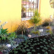 6 water saving landscaping ideas realty times