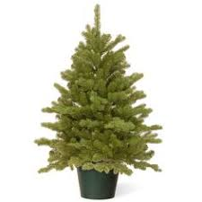 9ft weeping spruce feel real artificial tree