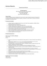 career profile resume hitecauto us