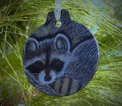 107 best raccoon rocks images on raccoons racoon and