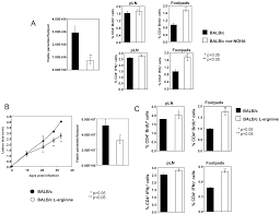 local suppression of t cell responses by arginase induced l