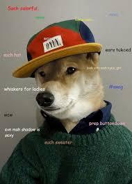 Doge Girl Meme - image 606426 doge know your meme