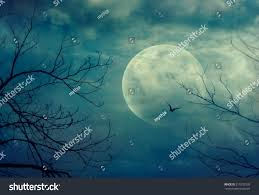 halloween background spooky forest full moon stock photo 215702320