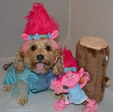 small dog witch costume troll poppy from the trolls movie halloween costumes for dogs