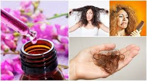 essential oils for hair growth and thickness 12 essential oils for your hair hair growth how to use them