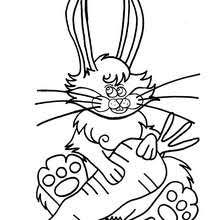 free farm animal coloring pages cow coloring pages hellokids com