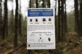 as ticks and lyme disease spread prevention efforts limited to