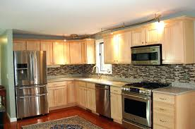 painting kitchen cabinets color options india cabinet nz lighting